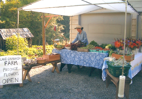 picture of Lake Cavanaugh Farm market stand
